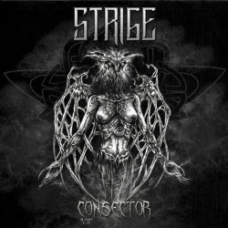 Consector (EP)