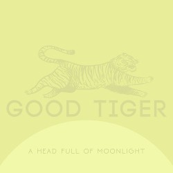 A Head Full Of Moonlight [Reissue]