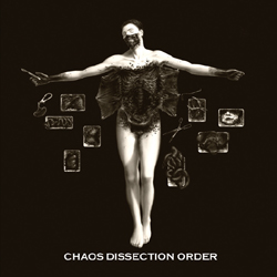 Chaos Dissection Order